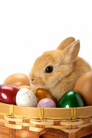 Ideias criativas e baratas para decorar na Páscoa