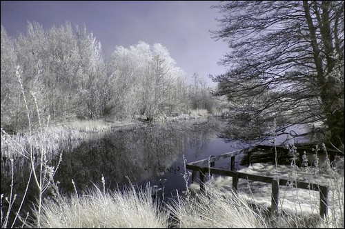 Cramlington Pond IR