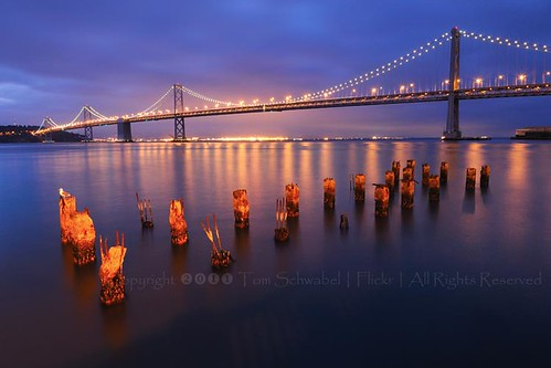 sanfrancisco california bridge reflection water dawn lights bay pier suspension seagull baybridge embarcadero pilings tomschwabel