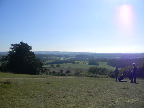 View from Newlands Corner