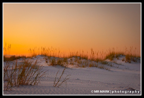 morning sea orange sun beach grass yellow sunrise sand florida dunes dune fl destin oats oat destindunes