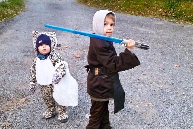 Le léopard et Anakin Skywalker III