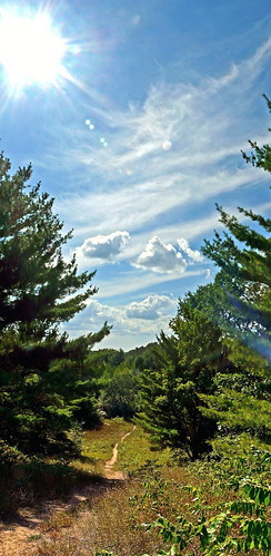 park sky sun tree nature clouds forest woods michigan bluesky panasonic trail pines michiganparks grandtraversecounty fz18 garfieldtownship scenicsnotjustlandscapes jimflix silverlakerecreationarea