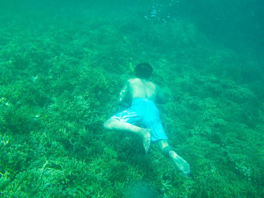 第一次下海