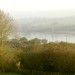 Rutland Water on a foggy November day