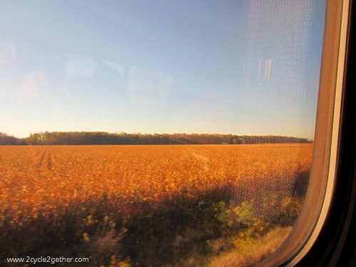 View of Midwest Landscape from Train