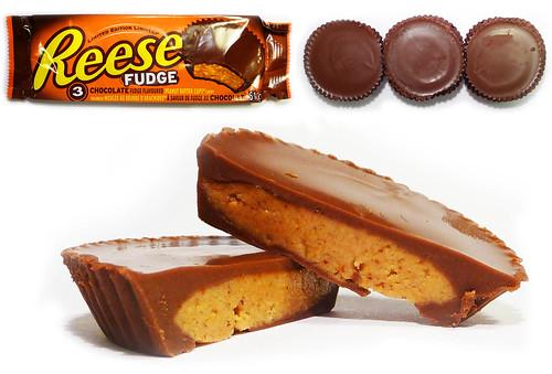 Reese Fudge
