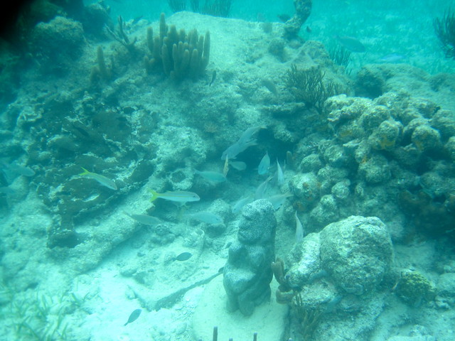 underwater museum second largest barrier reef in the world roatan honduras