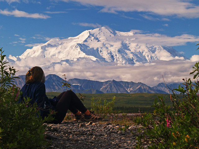 Denali from a Mosquito Headnet - 2006