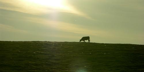 sunset mountains czech ore grazing erzgebirge hory krušné fojtovice mygearandme