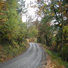 Dixie Mountain Road