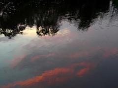 Vespre sobre el riu