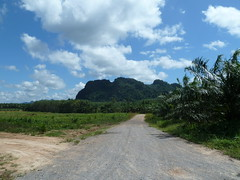 Krabi track