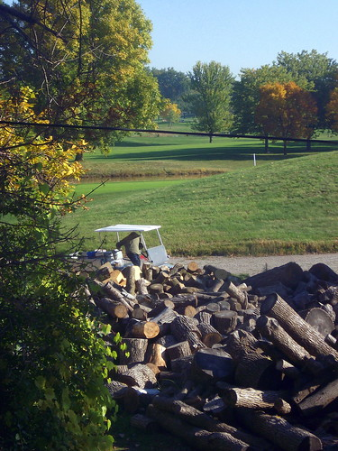 wood autumn trees sky color tree fall grass wisconsin golf landscape fallcolor bluesky foliage golfing golfcourse greenery countryclub golfcart wi firewood oshkosh woodpile golfcar clubcar utilityvehicle foxrivervalley foxcities colfcourse foxrivercities lakeshoremunicipalgolfcourse lakeshoremunicipal