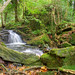Tranquil falls at Ballaglass. Lumix G3 by IMAGES FROM MAN.