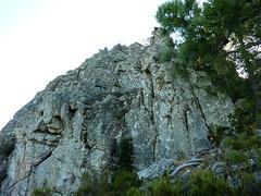 Sentier Capeddu-Sari : on longe la fin de la paroi N de Punta Balardia