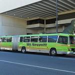 Mt. Gravatt Bus Service