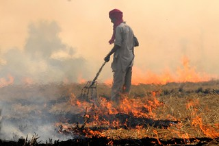 NP India burning 62