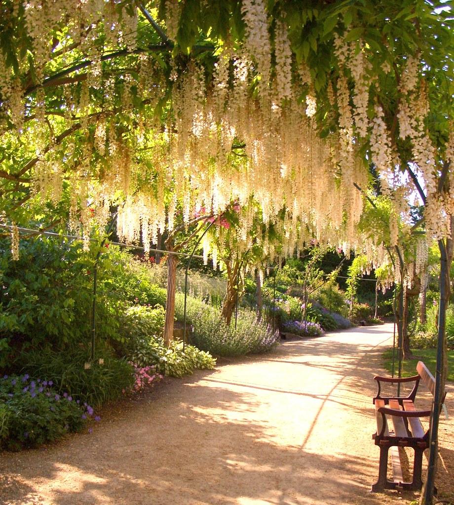 Penty de val 39 s most interesting flickr photos picssr for Apremont sur allier jardin