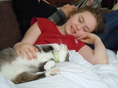child, sleep, pet, leg, person, interaction,