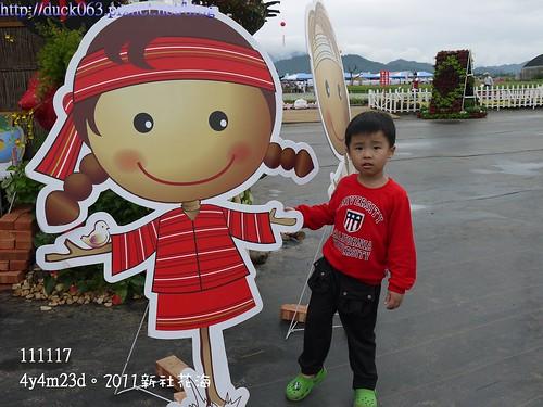 P1130377花海