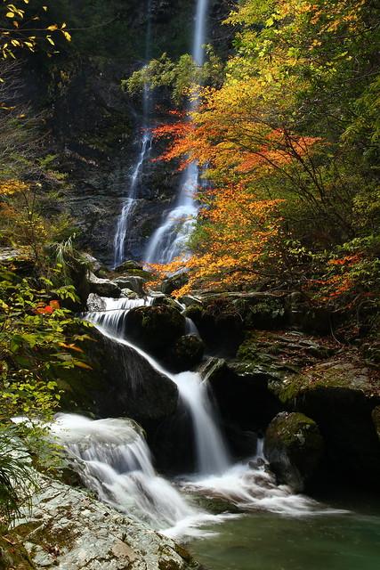 昇龍 Fall 1