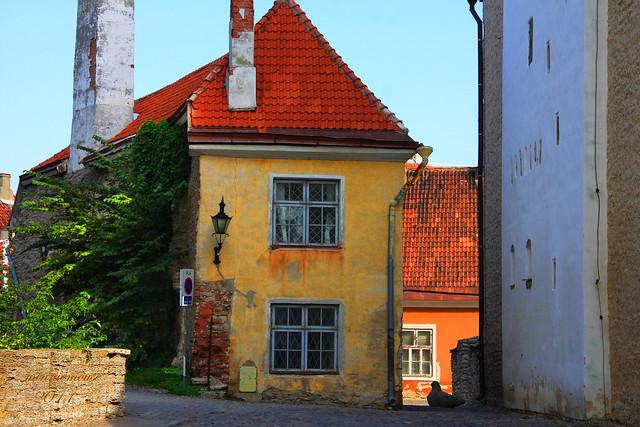 Tallinn, Estonia - Flickr CC minniemouseaunt