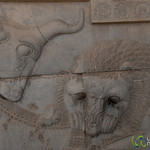 Persepolis Relief of Lion and Bull - Iran