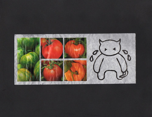 Tomatos by Shaun Wright