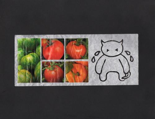 Tomatos by Shaun Wright