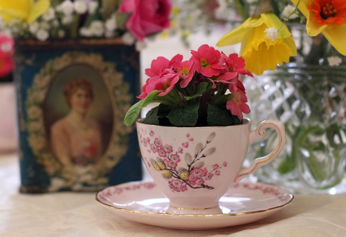 Primroses & Teacups ~ Saddleworth Shindigs