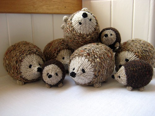 Hedgehogs galore!