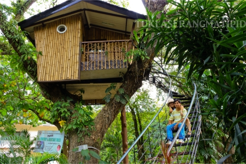 Pasonanca Tree house, Zamboanga del sur, Zamboanga,