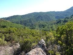 Bocca d'Alzeta Longa : la vallée de Favone