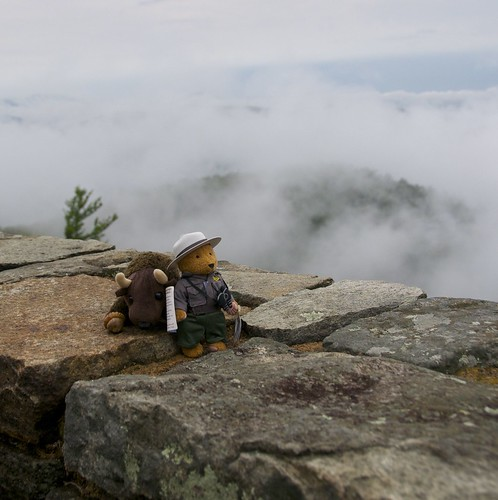Buddy Bison and Friend, Parker, on the Appalachian Trail in Shenandoah National Park, VA