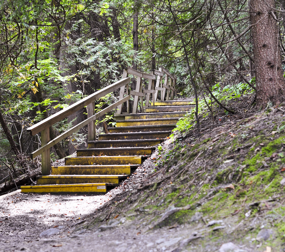 Yellow stairs - hiking at Belfountain Conservation Area near Caledon