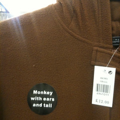 Monkey with ears and tail