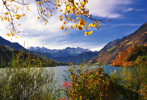 autumn mountain lake color nature water leaves landscape photography schweiz switzerland photo nikon day 2011 ceca lungern rockpaper poeexcellence pwfall pwpartlycloudy