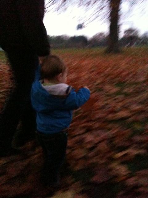Kicking the Autumn leaves