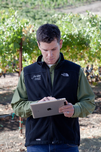 iPad in the vineyard