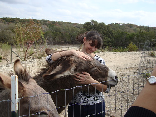 Austin:  designer Juliette Kimes (JKimes) and one of her donkeys at her home