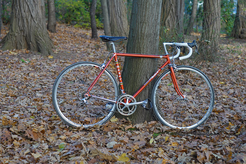 Francesco Moser 2.0