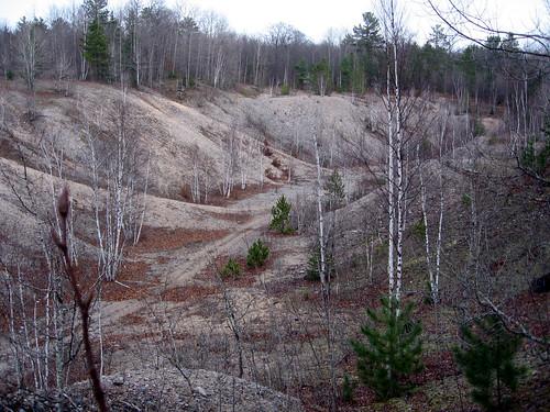 trees landscape gravelpit