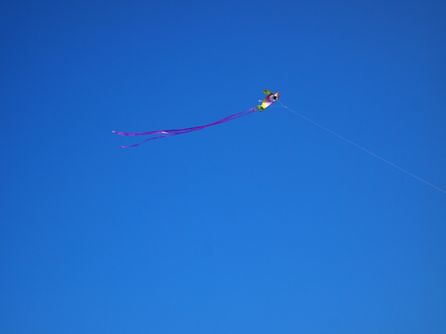 kiteflying