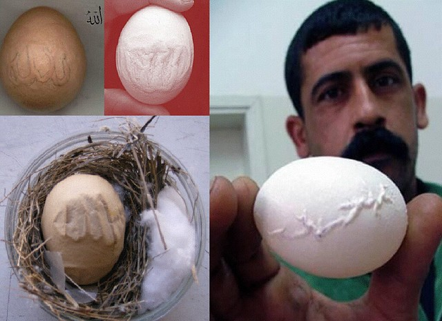eggs miracle- with name of supreme- ALLAH!