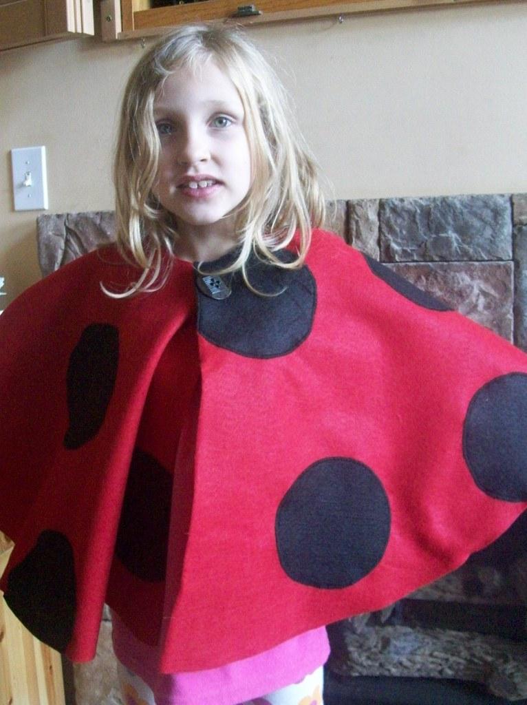ladybug K