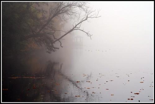 Nebel in der Schloßparkbucht