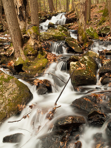 autumn fall nature water creek forest landscape waterfall woods stream nh brook cascade