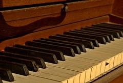 computer component(0.0), string instrument(0.0), electronic device(0.0), string instrument(0.0), celesta(1.0), piano(1.0), musical keyboard(1.0), keyboard(1.0), spinet(1.0), electric piano(1.0), digital piano(1.0), player piano(1.0),