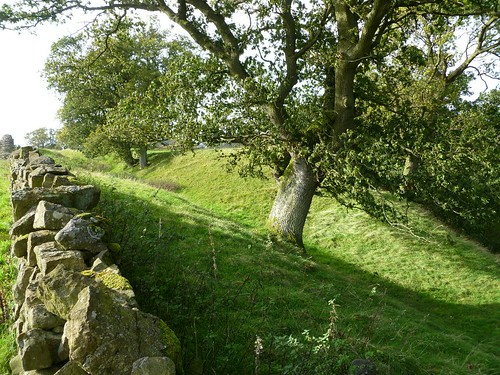 The ditch north of the field wall